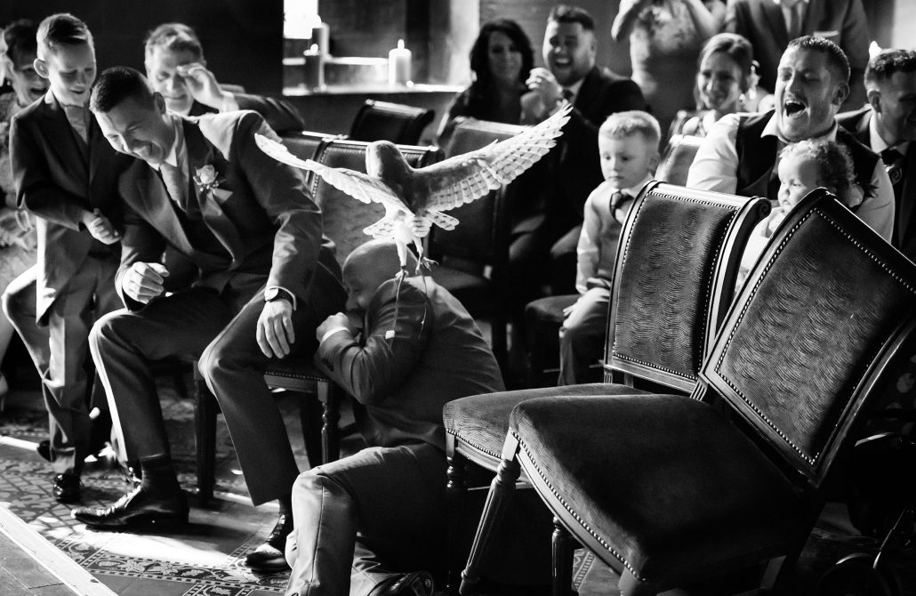 Best man being attacked by the owl at Peckforton Castle